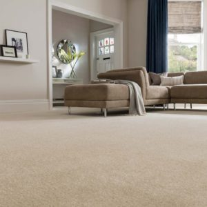 Dublin Heathers Carpet by Ideal - Only £6.67 m²