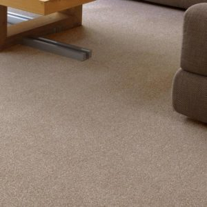 Developer Twist Elite Carpet by CFS - Only £17.48 m²