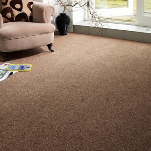 Developer Twist Super Carpet by CFS - Only £14.63 m²