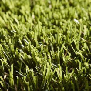 Lavish Lawns Majestic swatch