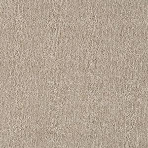 Startwist Edition color 270 Almond