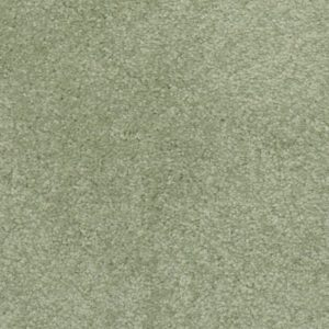 Evergreen 400