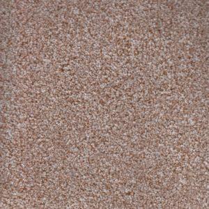 Ticino Wheat 72