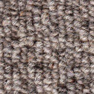 Hive Ash 376