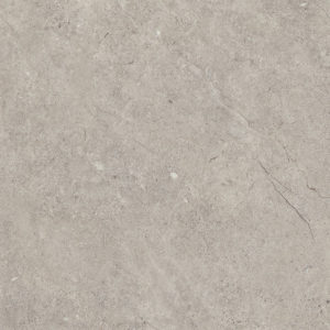Camaro Stone and Design Burnished Concrete