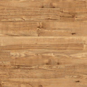 Camaro Wood Nut Tree