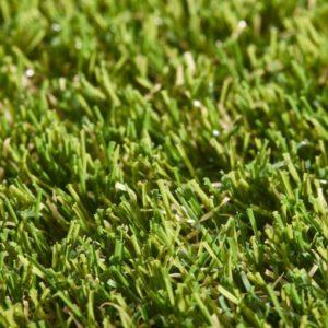 Lavish Lawns Regal Swatch